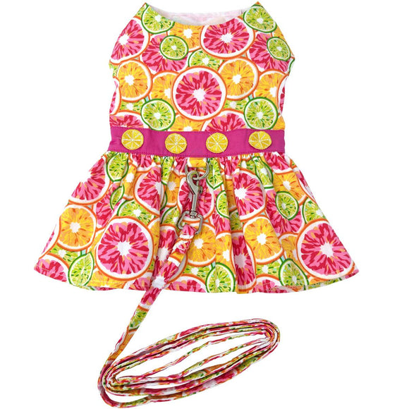 Citrus Slice Dog clothes with Matching Leash