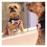 Clothes - Dog Tuxedo Wear American River Ultra Choke Free Dog Harness Tuxedo With 4 Interchangeable Bows