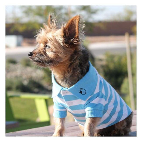 Clothes - Solid Dog Polo Blue Niagara And White With A Nice Crisp Look