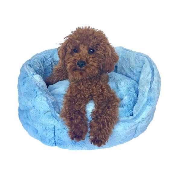 Dog Bed - Dog Bed Shell Light Blue
