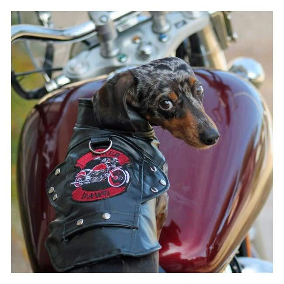 Dog Coats - Biker Dawg Motorcycle Dog Jackets Black Doggie Design