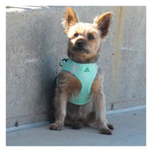 Dog Harness - Dog Harness American River Solid Ultra Choke Free Dog Harness Teal