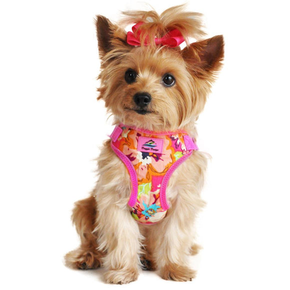 Picture of yorkie wearing a Wrap and Snap Choke Free Dog Harness by Doggie Design - Aruba Raspberry