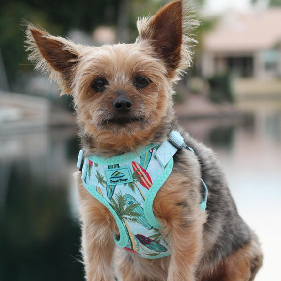 picture of a dog wearing an surfboard and palms dog harness