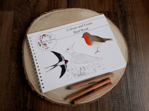 At The Cherry Tree Colour And Learn Bird Book