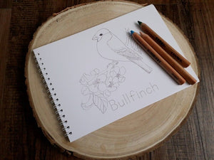 COMING SOON NEW At The Cherry Tree Colour And Learn Bird Book