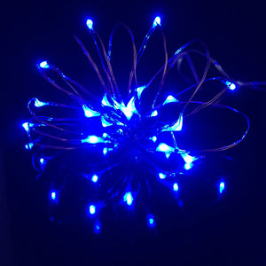 Blue Micro LED FAiry Lights AA battery operated