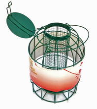 Small Garden bird Feeders for robins, blue tits and finches - medium nut feeder