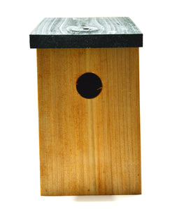 Kingfisher Nesting Box bird house for small garden birds top