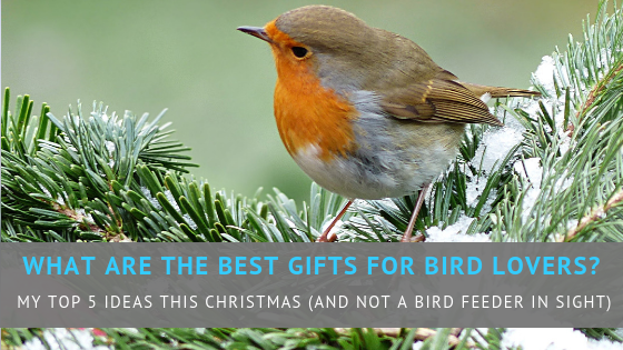 What are the best gifts for bird lovers?