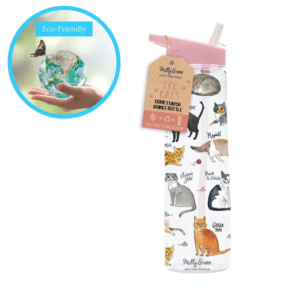clear cornstarch eco-friendly water bottle in Curious Cats design pink top with a variety of cat breeds depicted