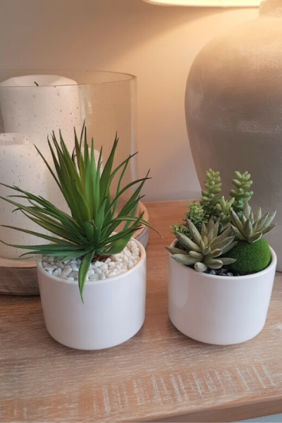 Pair of Artificial Succulent Ceramic Planters