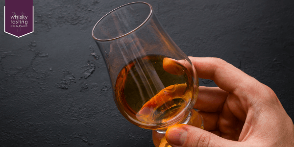man who is about to taste whisky from tulip-shaped glass