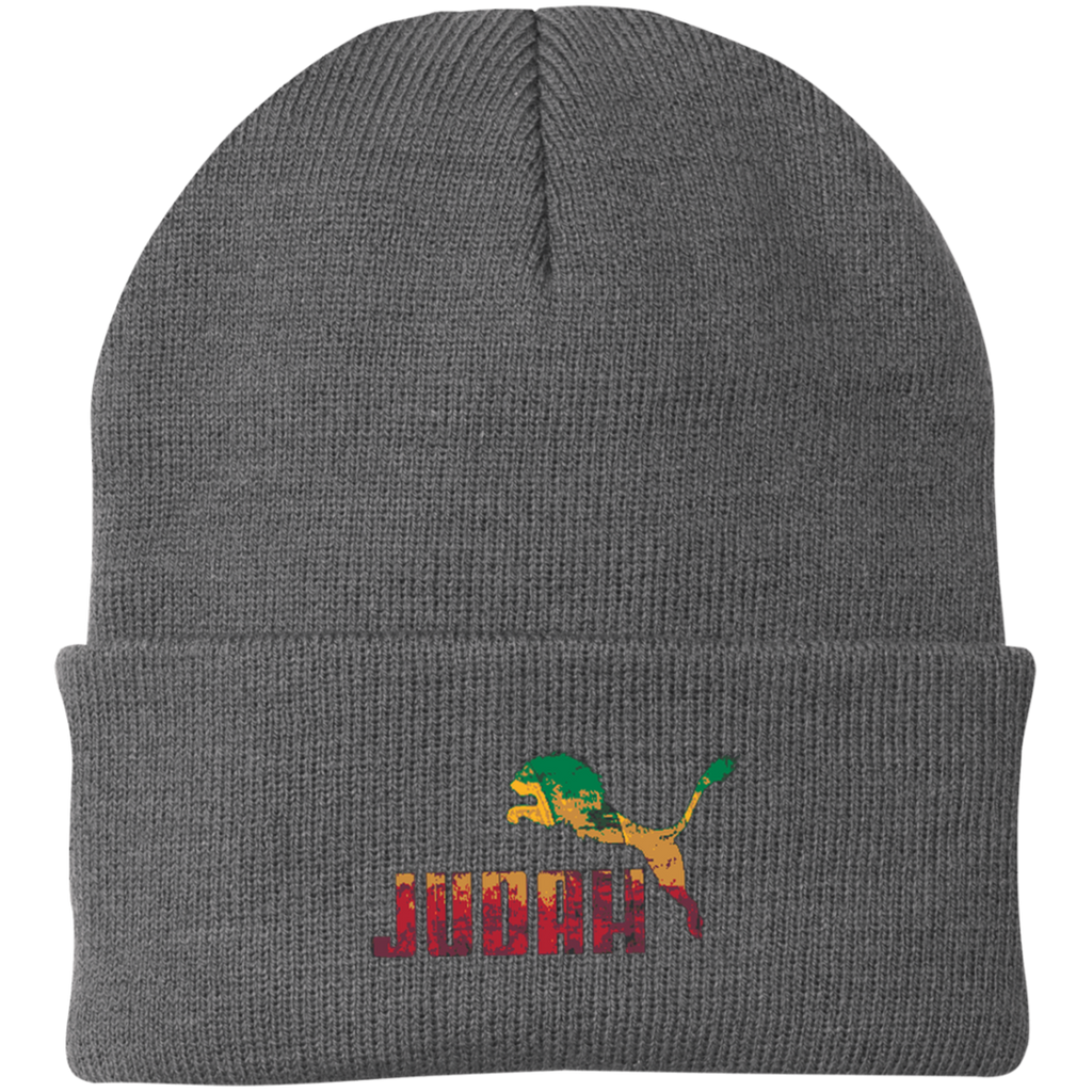 CP90 Port Authority Knit Cap – gravitypuertorico 8858f50bf6a