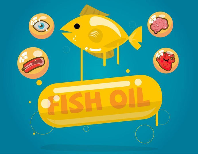 10 Fish Oil Benefits : 10 Problems Fish Oil Can Help With