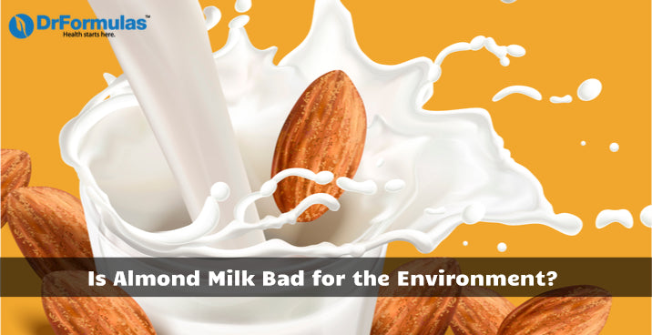 Is Almond Milk Bad for the Environment?