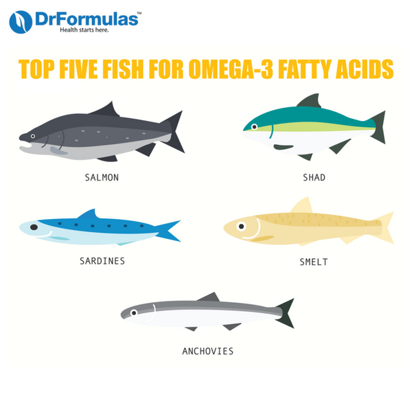 10 Fish Oil Benefits : How Fish Oil Can Help Treat Diseases