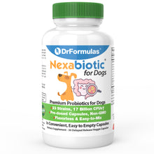 DrFormulas Best Probiotics for Dogs | Nexabiotic Probiotic for Dogs, 30 Doses
