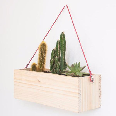 Modern Wooden Hanging Planter by Oitenta on OOSTOR.com