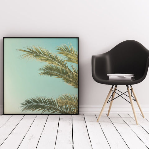Autumn Palms II Photographic Art Print by Cassia Beck on OOSTOR.com