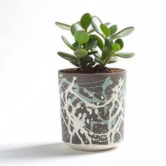 Basalt Planter With Splatter Pattern by Yahalomis on OOSTOR.com