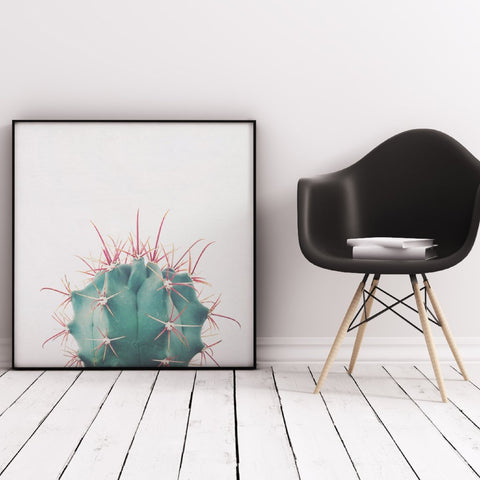 Ferocactus Photographic Art Print by Cassia Beck on OOSTOR.com