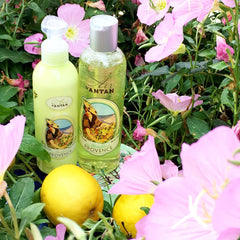 Les Marchés De Provence Body Lotion by Un Air d'Antan on OOSTOR.com