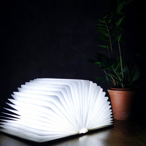 Maple Smart Book Light by Gingko