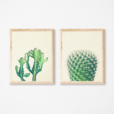 Set of Two Cactus Prints by Cassia Beck on OOSTOR.com