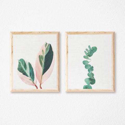 Set of Two Botanical Prints by Cassia Beck on OOSTOR.com