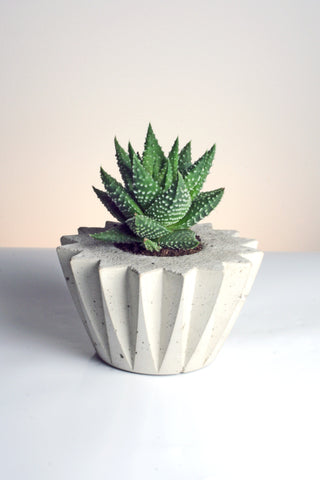 Round Pleated Zig Zag Handmade Geometric Concrete Planter by Tri Geometrica on OOSTOR.com