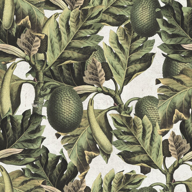 Exotic Fruit I Wallpaper by Pad Home on OOSTOR.com