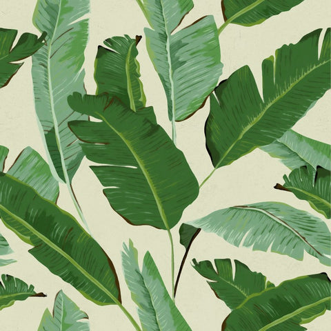 Banana Leaves Wallpaper by Pad Home on OOSTOR.com