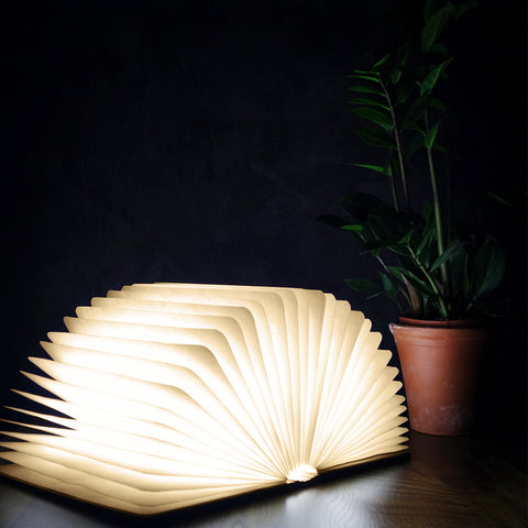 Walnut Smart Book Light by Gingko