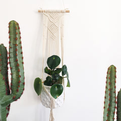 Macramé Hanging Plant Holder by Eclectic Eccentricity on OOSTOR.com