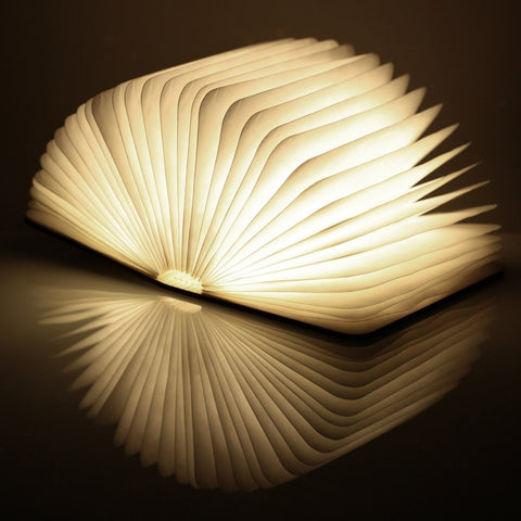 Mini Walnut Smart Book Light by Gingko on OOSTOR.com