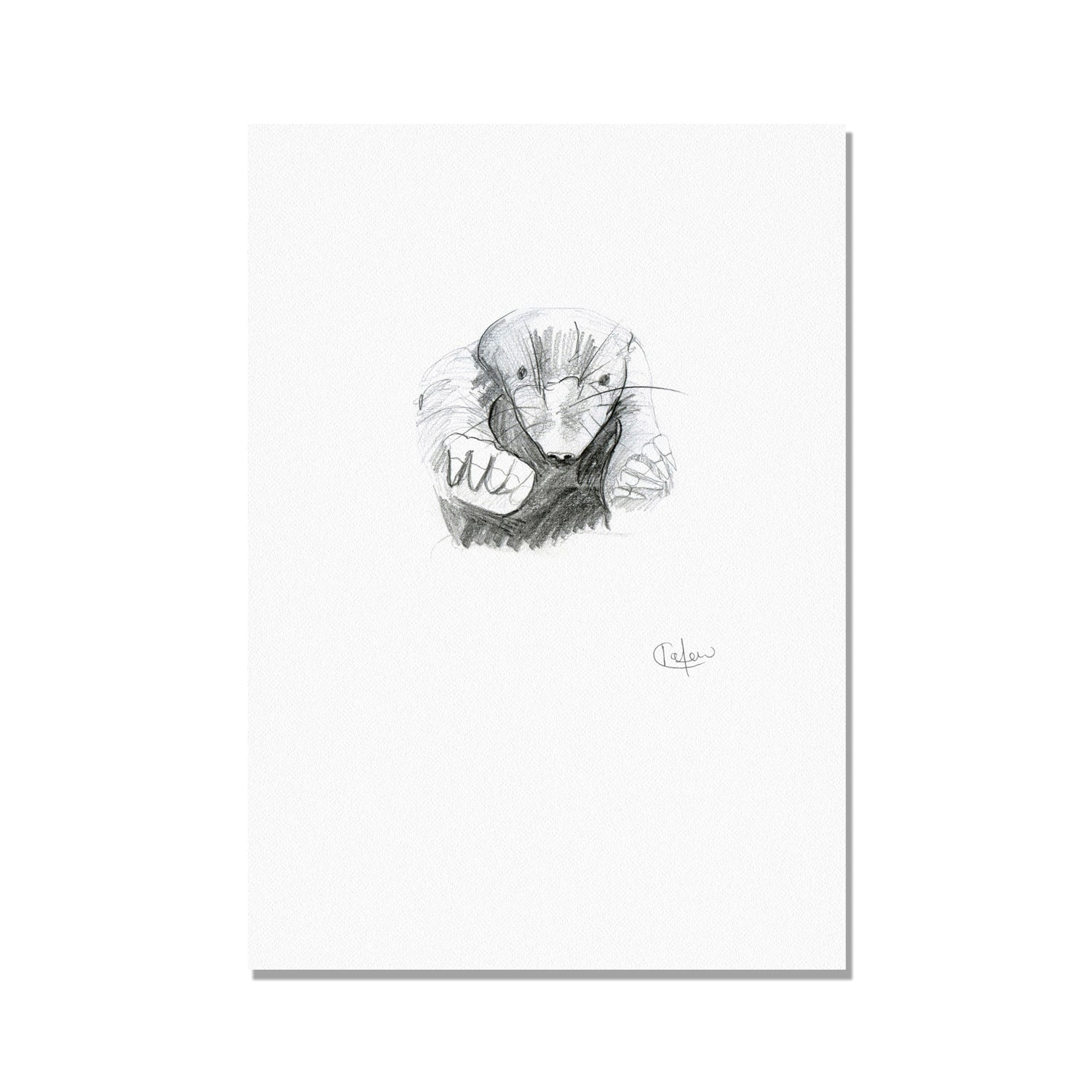 Pencil Mole Illustration Print by Kate Moby on OOSTOR.com