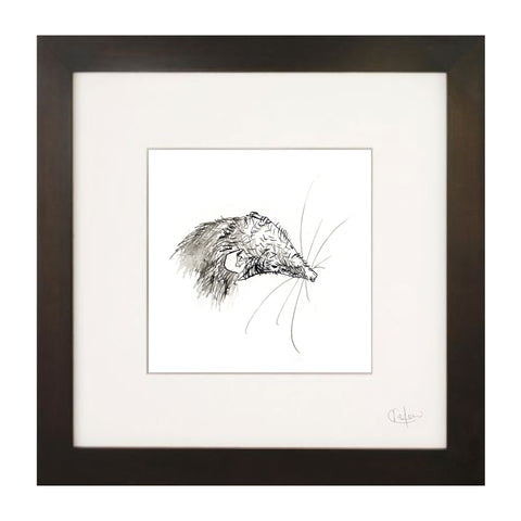 Shrew Illustration Print by Kate Moby on OOSTOR.com