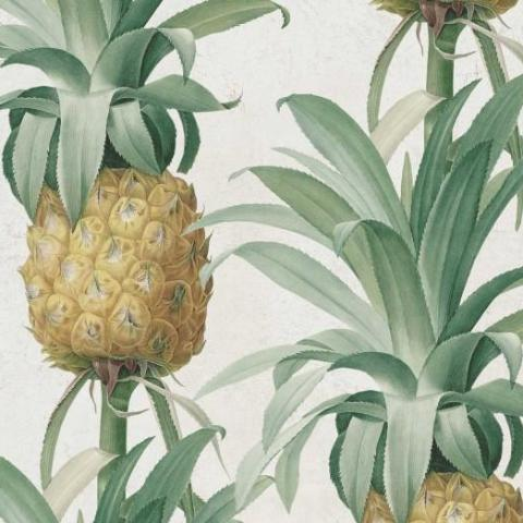 Ananas Wallpaper by Pad Home on OOSTOR.com