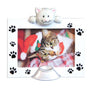 Cat Frame Christmas Ornament