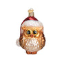 Santa Owl Ornament for Christmas Tree
