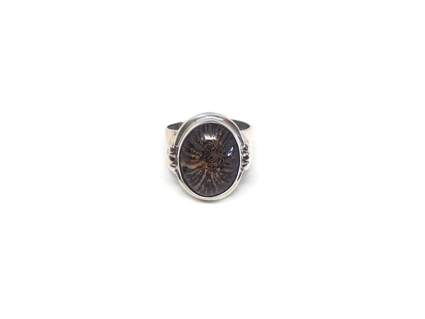 Ring7Fossilite