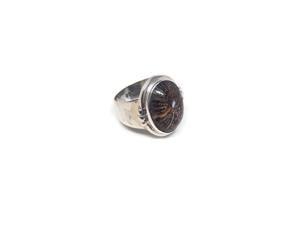 Ring7Fossilite2
