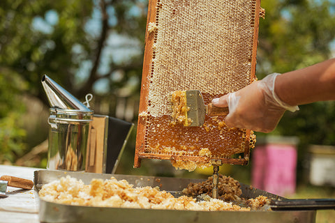 Beeswax and honey are great replacements for the chemical laden products in your life