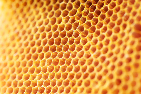 Honey with Honeycomb by Don Victor - Natural Foods