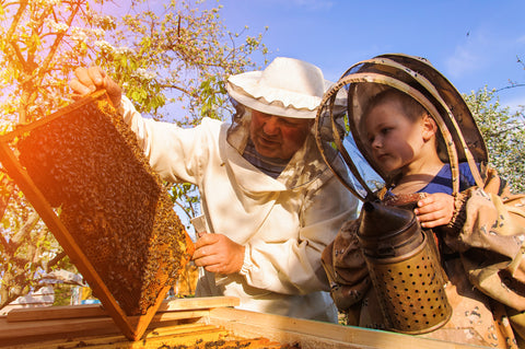 Beekeepers, bees, and honey