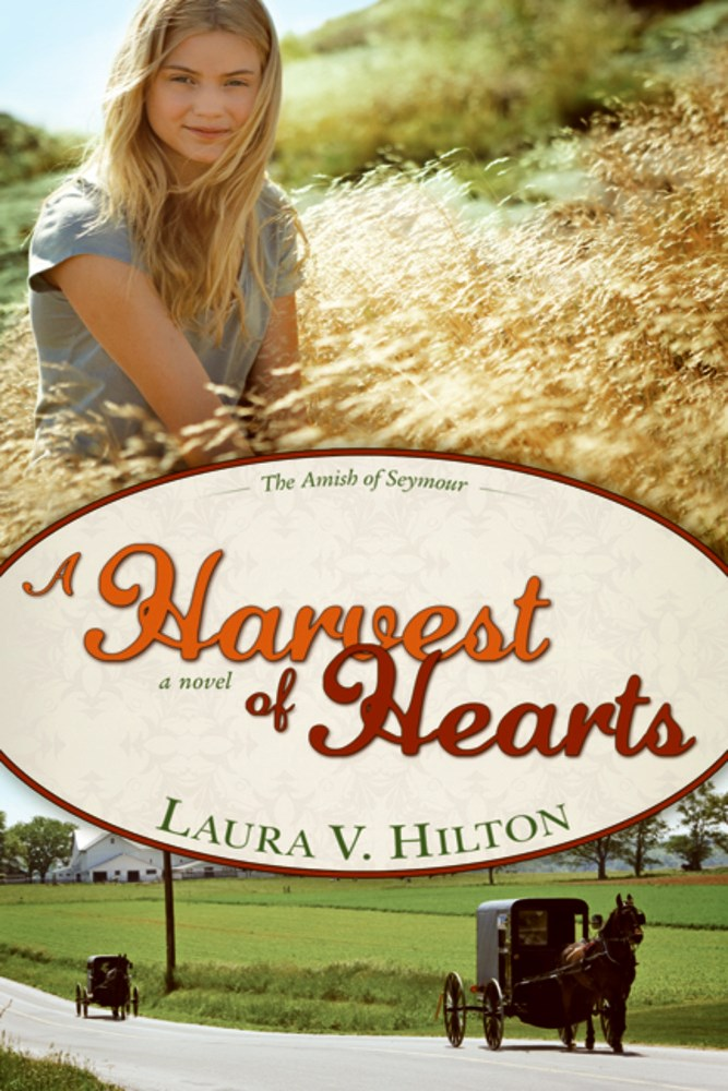Harvest Of Hearts (Amish Of Seymour V2)