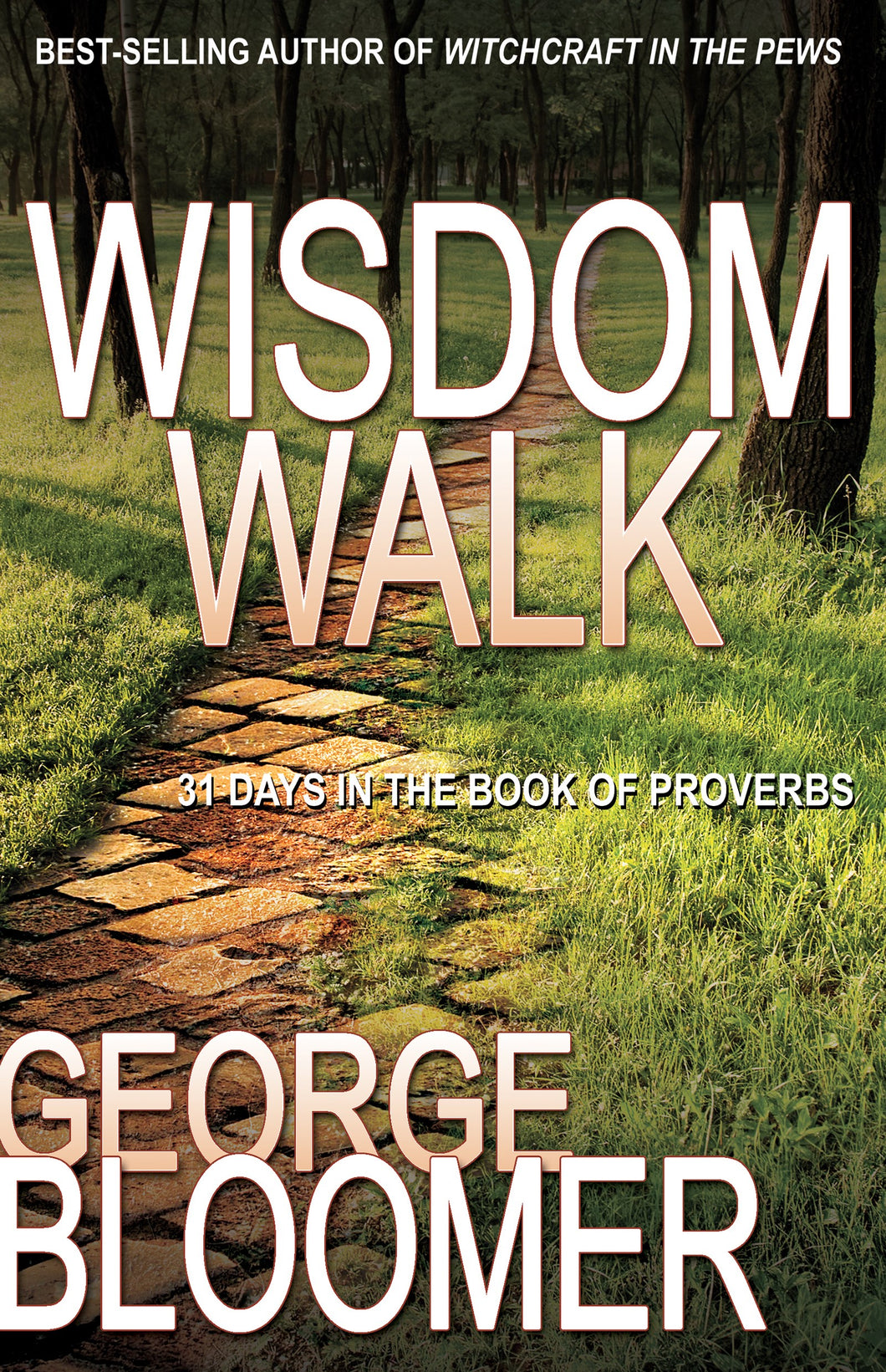 Wisdom Walk: 31 Days In The Book Of Proverbs