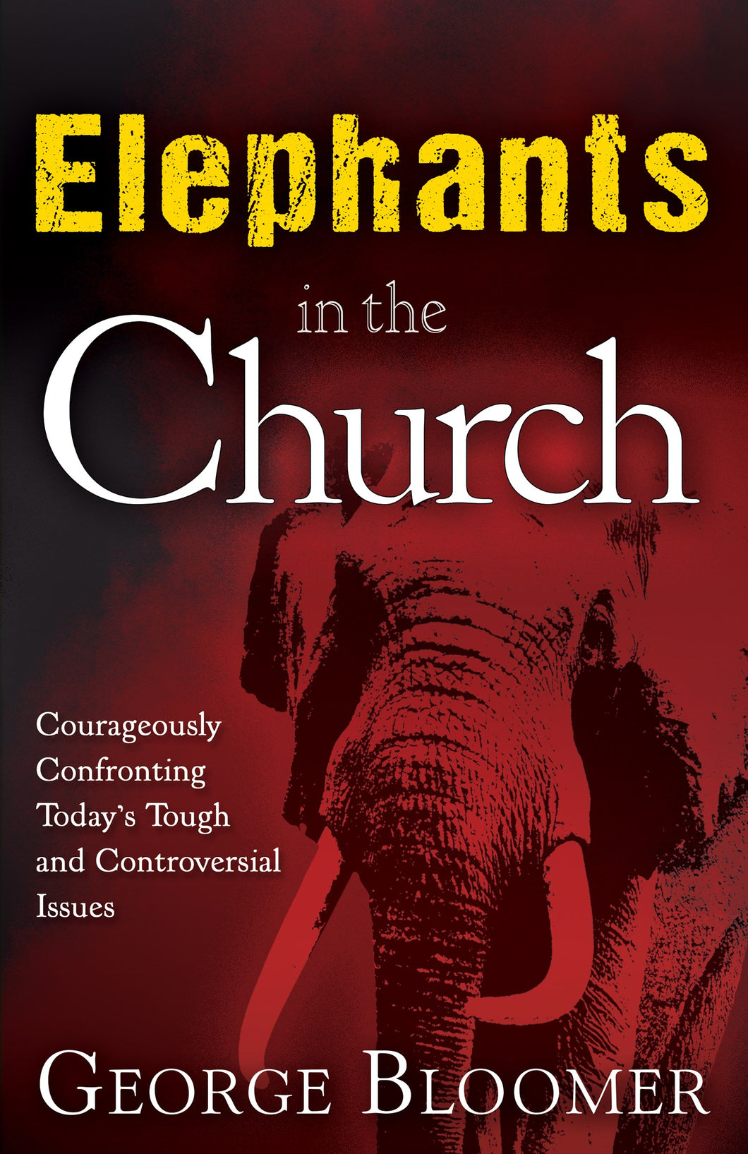 Elephants In The Church