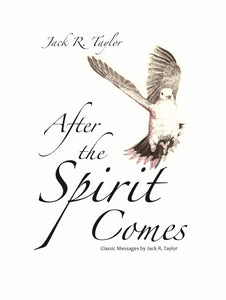 After The Spirit Comes